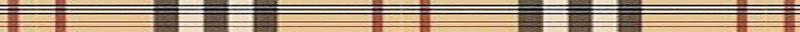 Burberry pattern1-1000x40