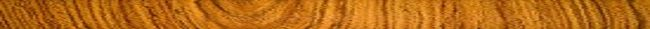 Wood grain 1000 X 45