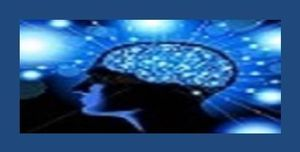 PARALEGAL BRAIN THE BLOG cropped