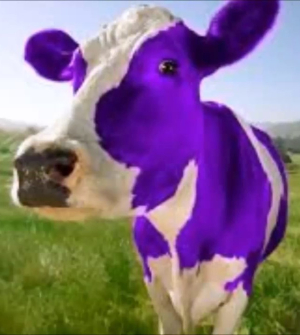 PURPLE COW FACE